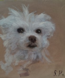 oil portrait, pet portrait, oil portrait of dog
